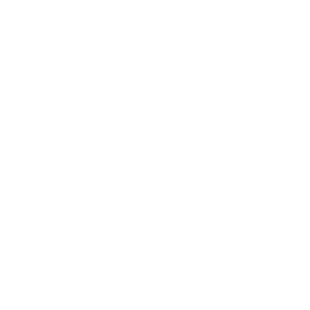 slaski_akcel